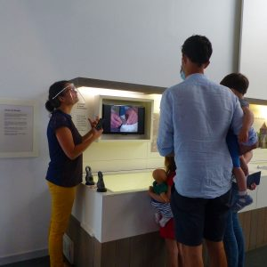 Les vacances apprenantes au musée de l'île d'Oléron … tout un programme !