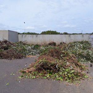 COVID-19 : les remorques de déchets verts en déchèteries à nouveau acceptées dans les 3 déchèteries de l'île d'Oléron, dès ce lundi 29 juin